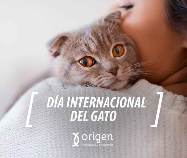 mujer feliz abrazando un gato gris. Día internacional del gato